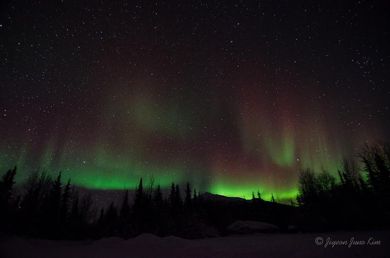 USA-Alaska-Wiseman-Aurora-2784.jpg