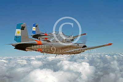 Argentinian  Air Force Beech T-34 Mentor Trainer Airplane Pictures for Sale
