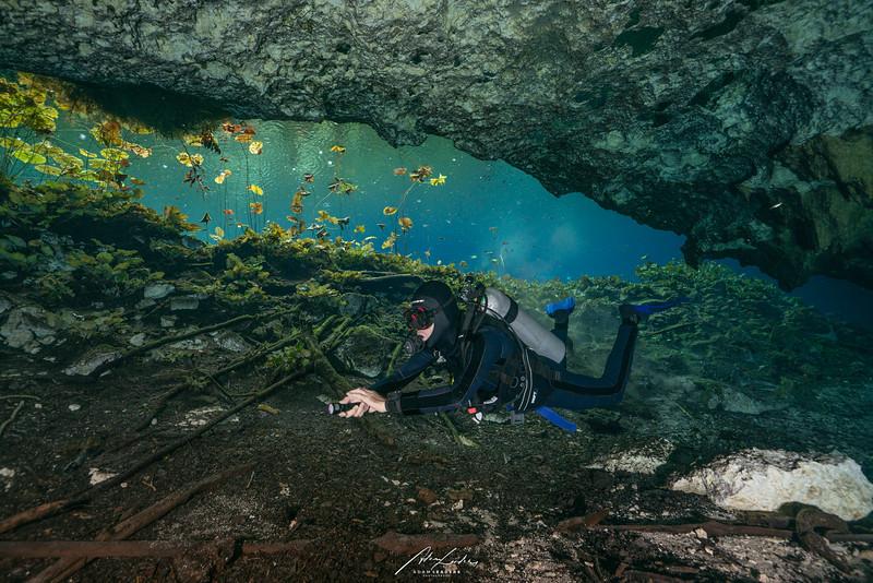 210111 Cenotes-03416.jpg