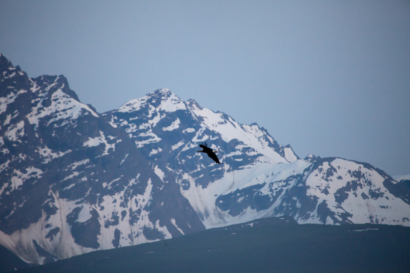 Alaska Copper River-8360.jpg