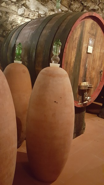 Montecchio Wine Cellar