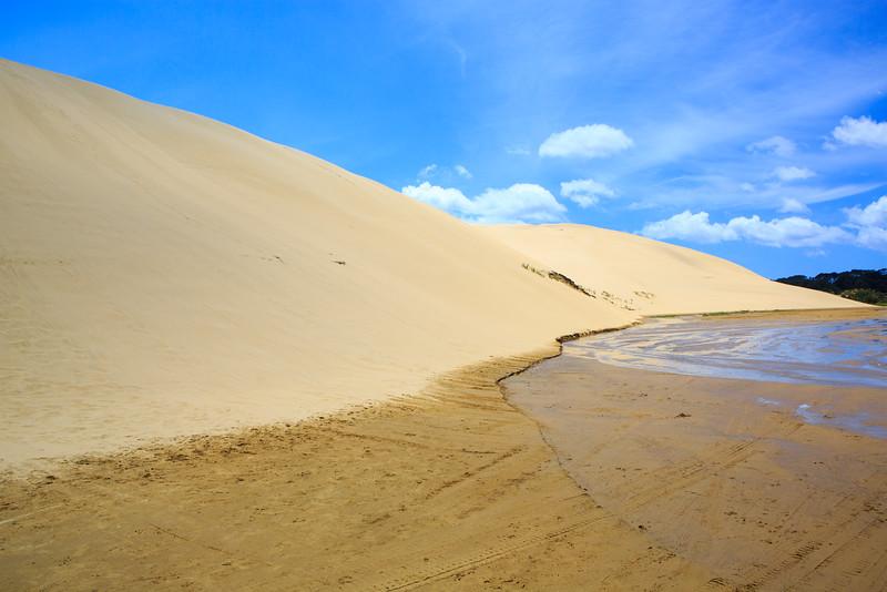 Sand Dunes on 90 Mile Beach