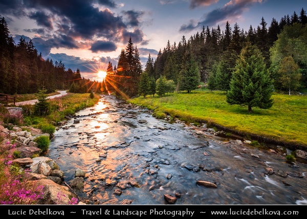 Czech Republic - Šumava National Park