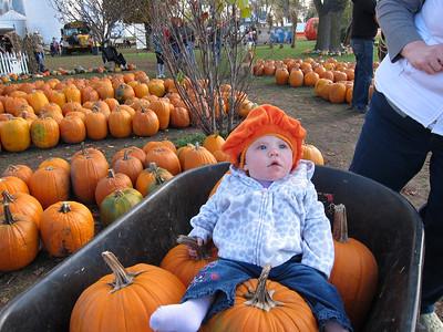 Pumpkin Farm - October 2011