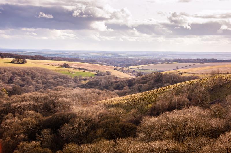 Ashcombe Valley