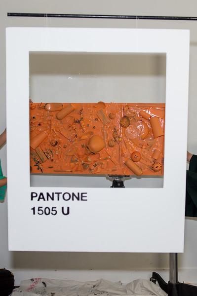 pantoneteam-3042.jpg