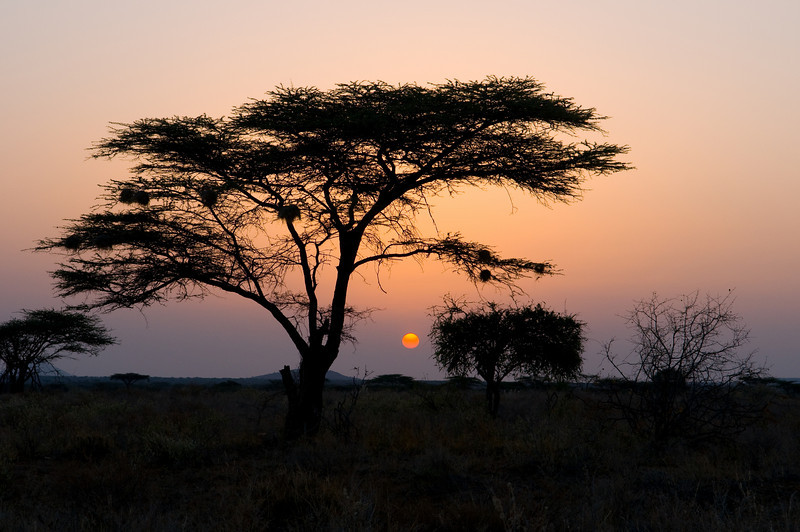 Shaba Sunset JF2_3816.jpg