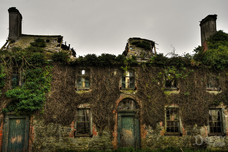An Abandoned Ireland