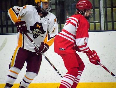 HS Sports - Division 3 Hockey 2020 Regional Semis