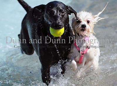 2011-09-10 - Keller Doggie Dunk