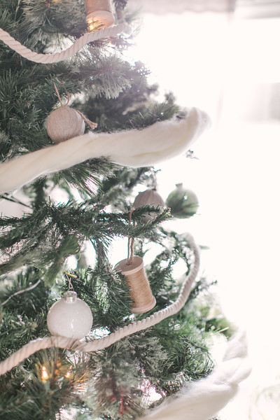 44_Ollie-December.jpg