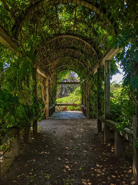 Annapolis Royal Historic Gardens-3.jpg