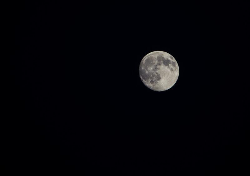 moon full-2-2.jpg
