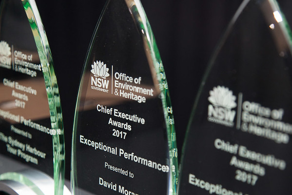 Chief Executive Awards - WEB