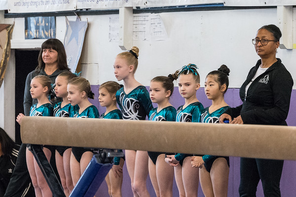 3-7-2020 Apex Lights Camera Action Gymnastics Meet Level 3
