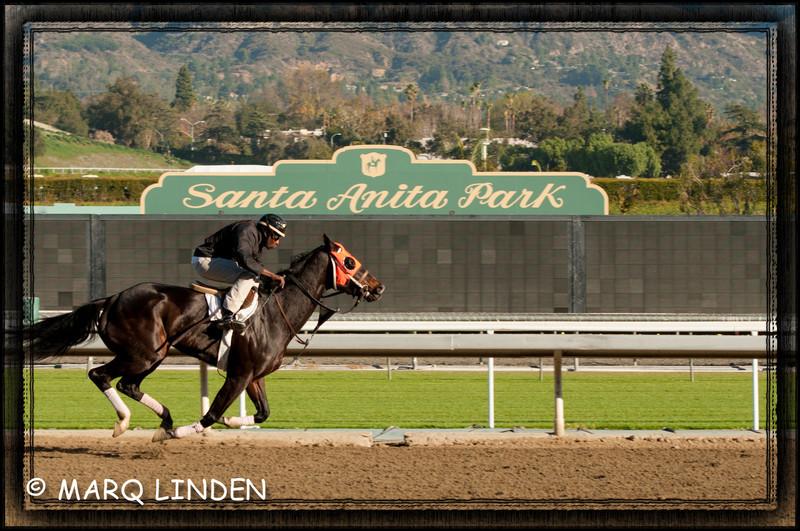 Santa Anita Shoot  With  Frame.jpg