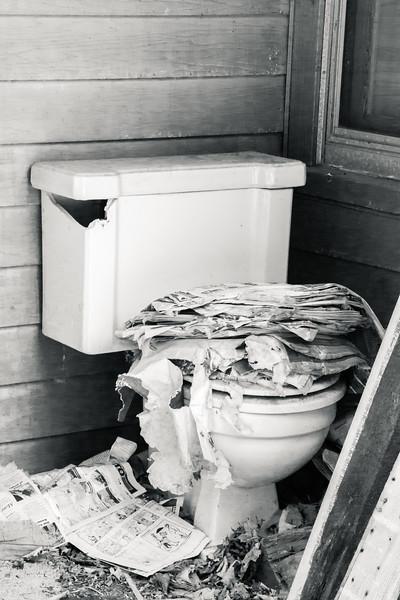 Toilet at the Abandoned Farmhouse