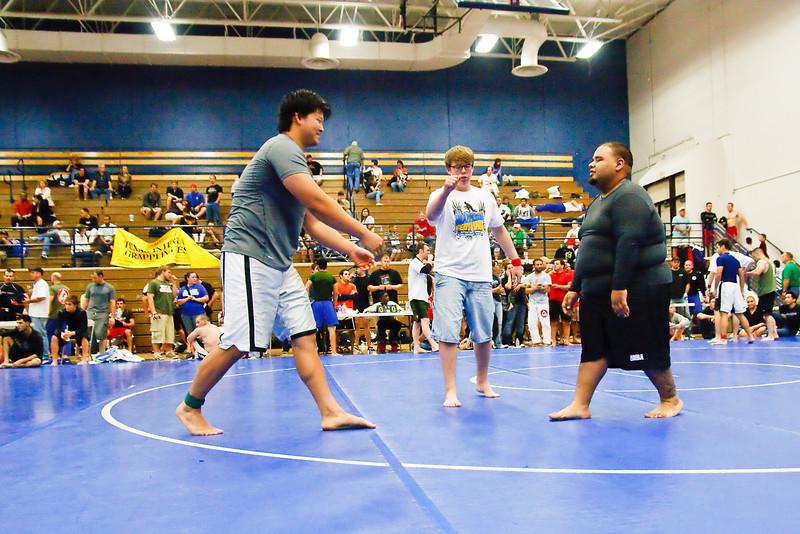 MMA_Houston_20090418_0973.jpg