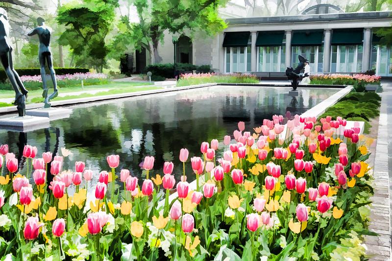 Tulips04