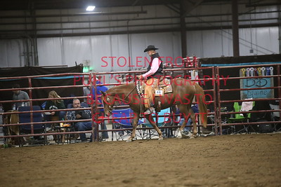 46. Two Y/O Ranch Riding