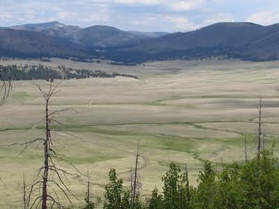 Jemez Mtns. - Coyote Call Trail Hike  6-15-20