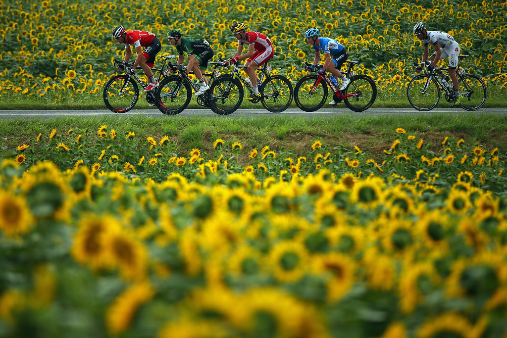 . The breakaway in action during the nineteenth stage of the 2014 Tour de France, a 208km stage between Maubourguet Pays du Val d\'Adour and Bergerac, on July 25, 2014 in Bergerac, France.  (Photo by Bryn Lennon/Getty Images)