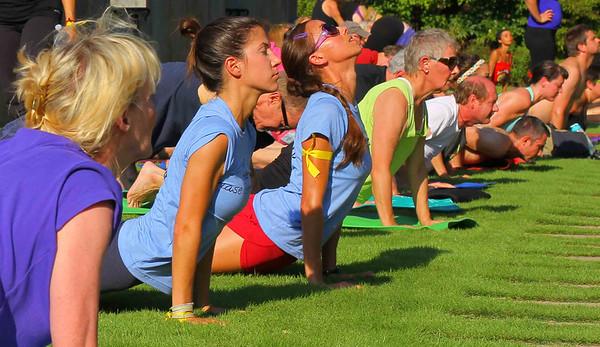 Botanical Yoga (102 lo-res)