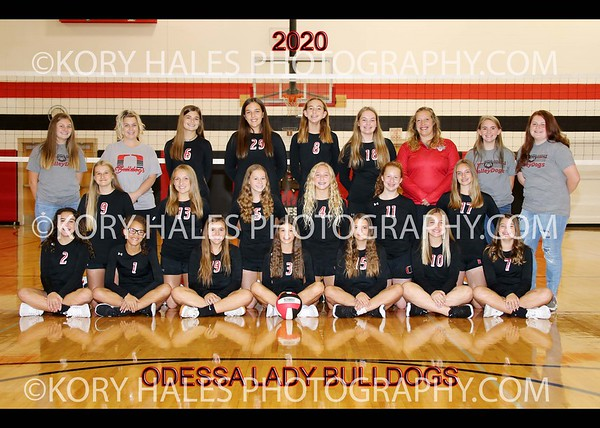 2020 OMS Volleyball
