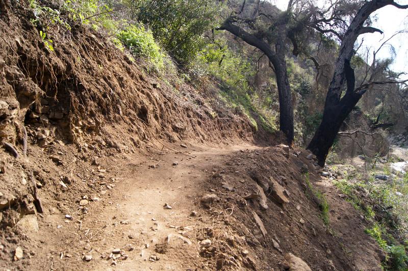 201201291631-El Prieto Trailwork.jpg