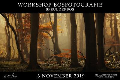2019-11-03 Workshop Speulderbos