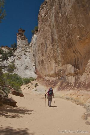 Utah Canyon Trips