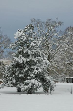 White Christmas - 2004