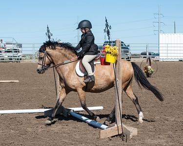 DES 2019 Horseshow #'s 100 to 105