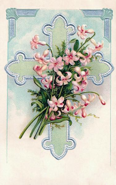 lily-pink-cross.jpg
