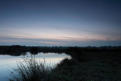 Landscapes of 'Het Groene Woud'