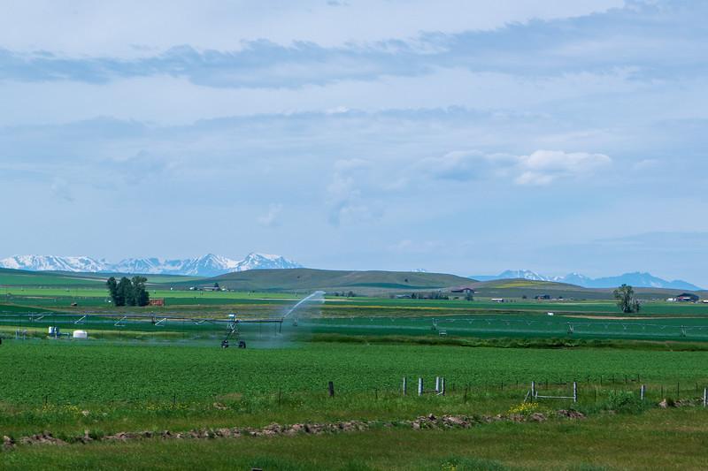 Montana Irrigation Vista