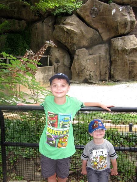 20130628_philadelphia_zoo_1184.jpg