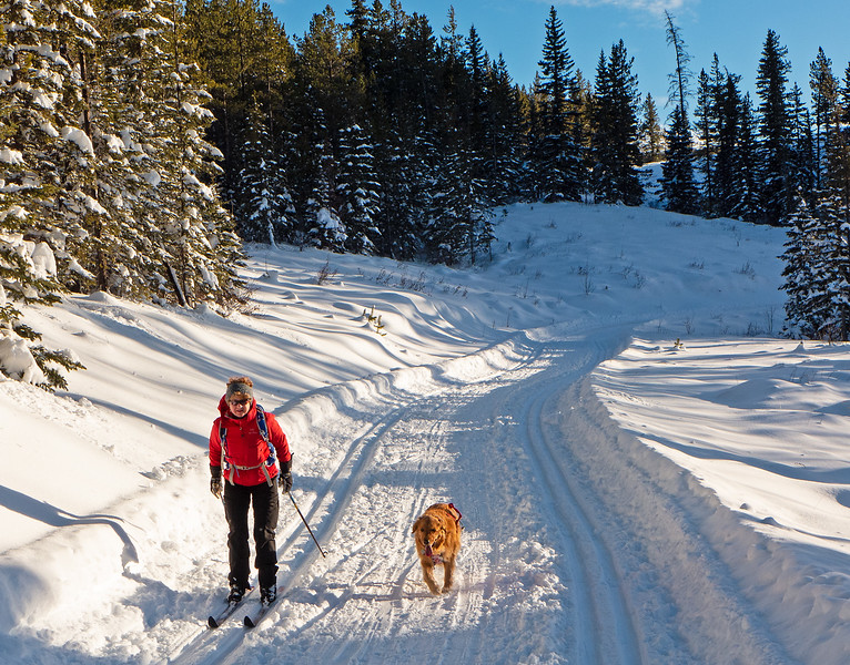 Jo and Piper enjoying the very good skiing conditions on Mountain View, on December 23.
