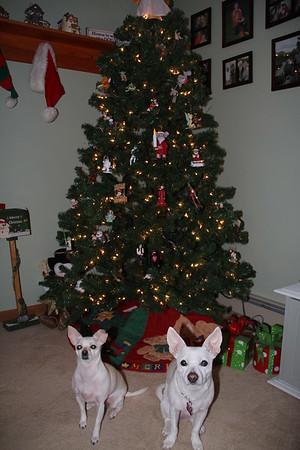 Christmas 2016 Photos