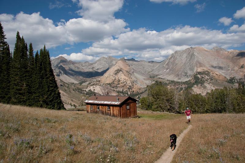 Dog running along the Pio Cabin trail