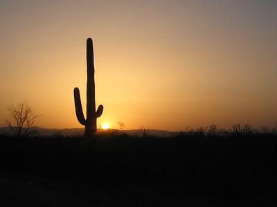 Tucson Arizona 2007 & 2006