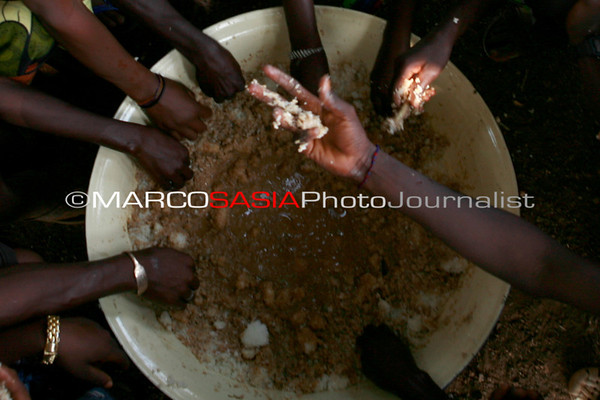 Senegal Bassarì Harvest Time
