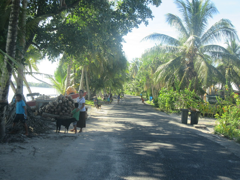 038_Funafuti Conservation Area. The island road. Only 2 roads in the island (one along the airstrip, one along the coastline).JPG