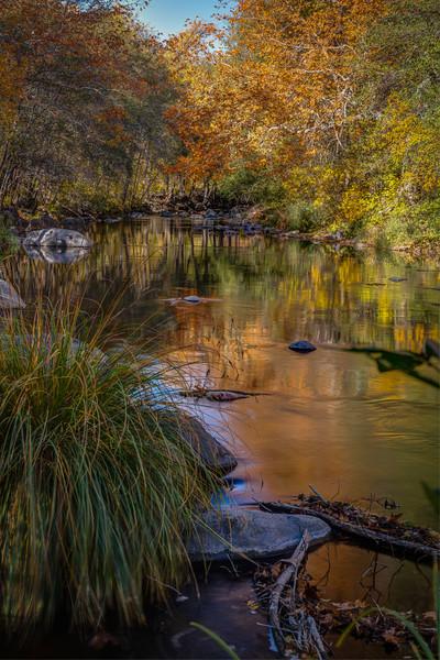 Sedonaa Thanksgiving Fall (5).jpg