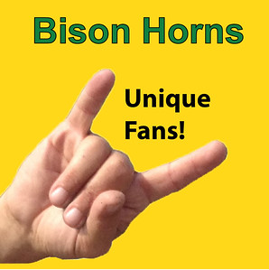 Bison Horns - Unique Fans