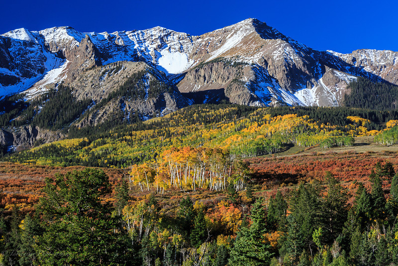 Colorado Color-32.jpg