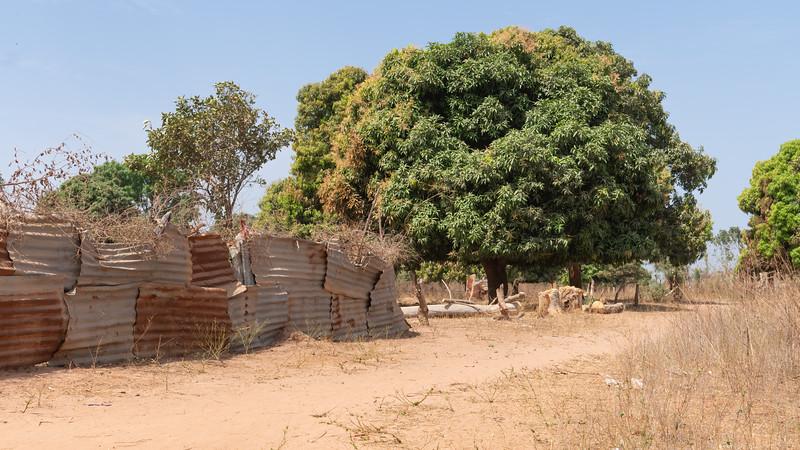 Scenery near village  - The Gambia 2020.jpg