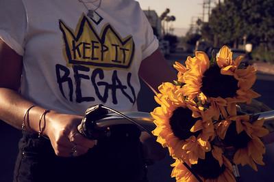 Sunflowers 1.01