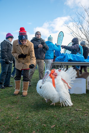 2018 Nantucket Atheneum Turkey Plunge