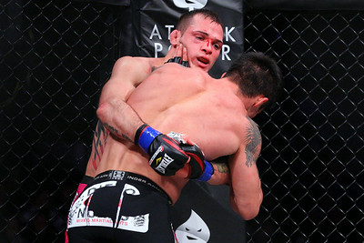 Boxing - MMA